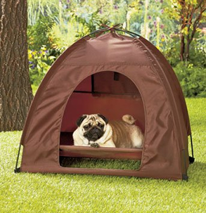 Elevated Dog C&ing Tent Set & Mini Display Tents | Small Pet Camping Set