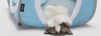 Mini Tents for Cats